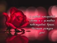 С любов покорявай света и с усмивка побеждавай врага. Честит рожден ден!